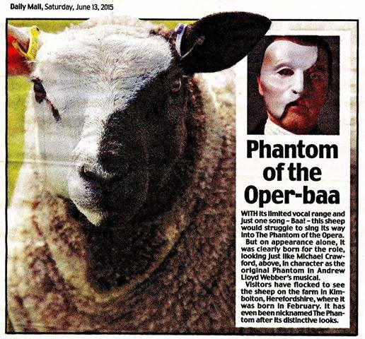 Sheep The Phantom